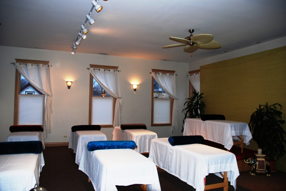 Continuing Education class for massage therapists