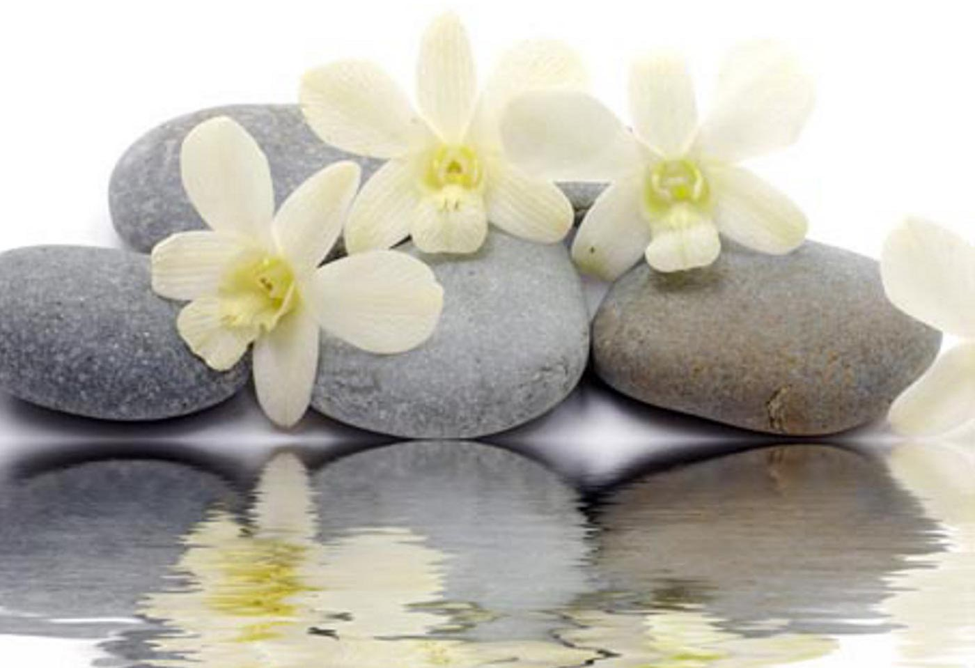 Hd wallpapers zen stones reflecting white flowers new desktop hd wallpapers zen stones reflecting white flowers new desktop 1400959 wallpaper mightylinksfo
