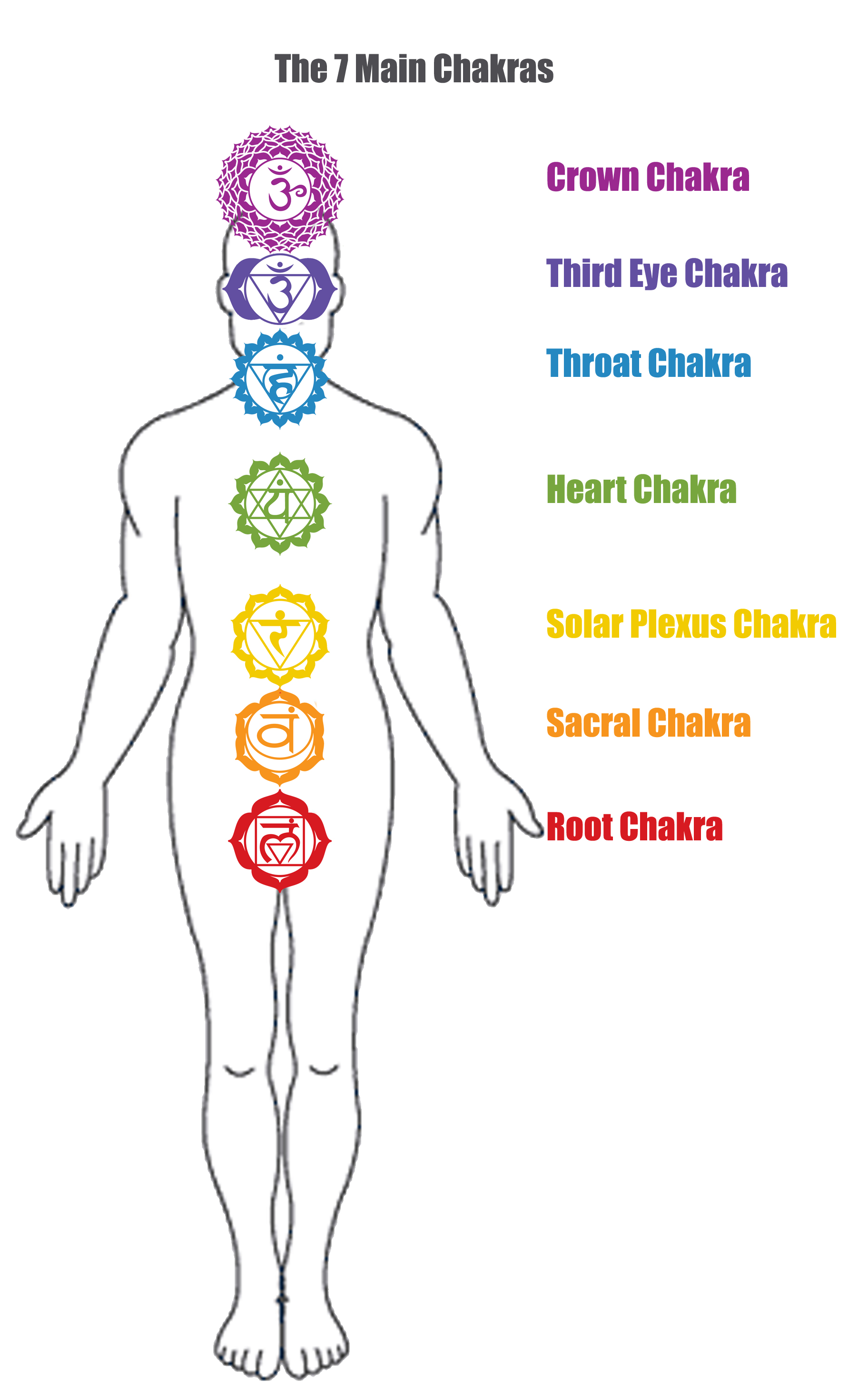 What is a ChakraMSI Healing